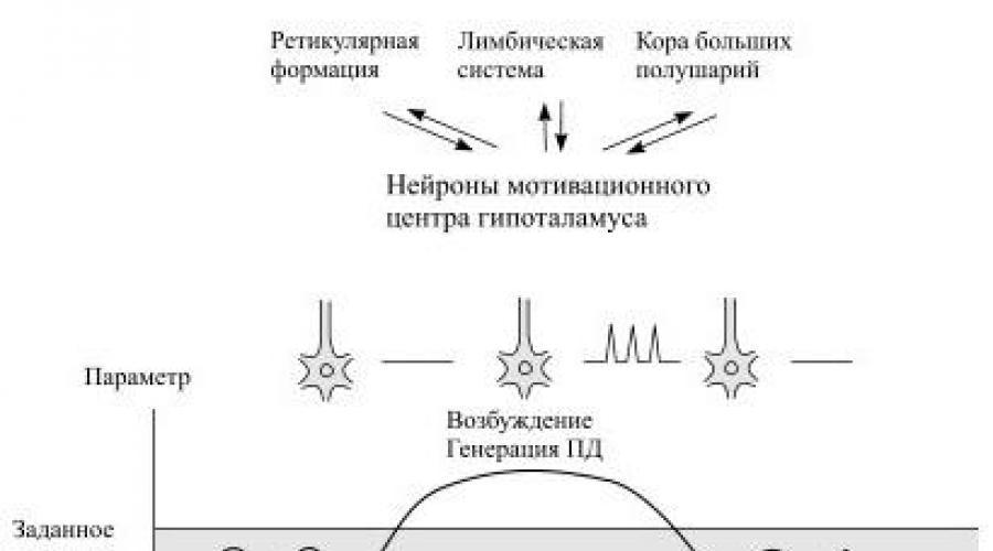 A prosztata elektromos stimulálása krónikus prosztatagyulladás esetén