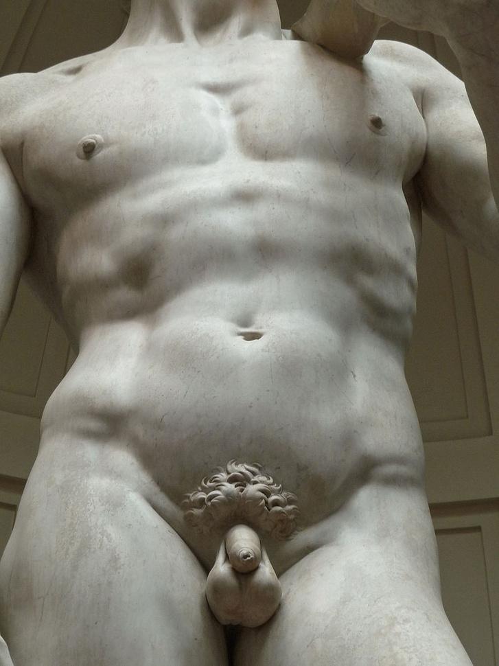 férfi pénisz az