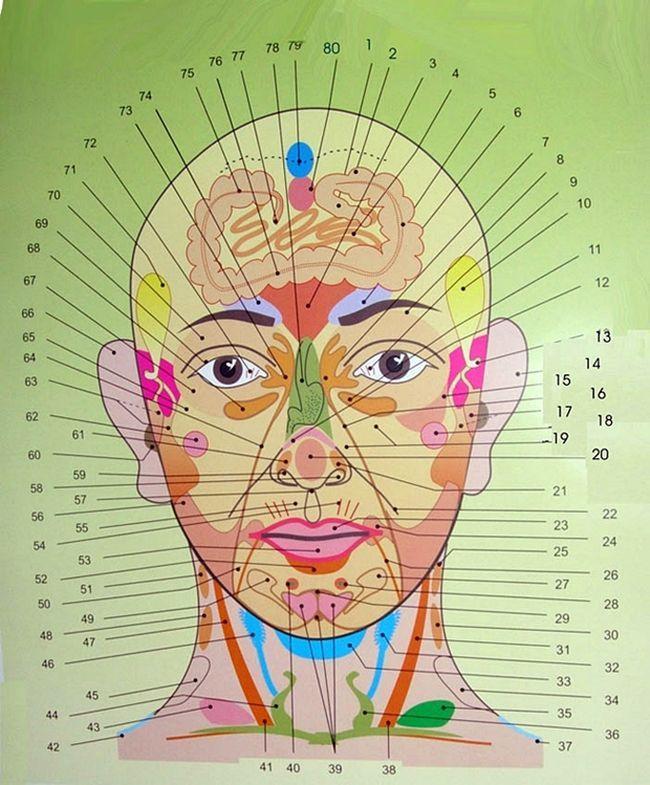 az emberi test pontjai az erekcióhoz