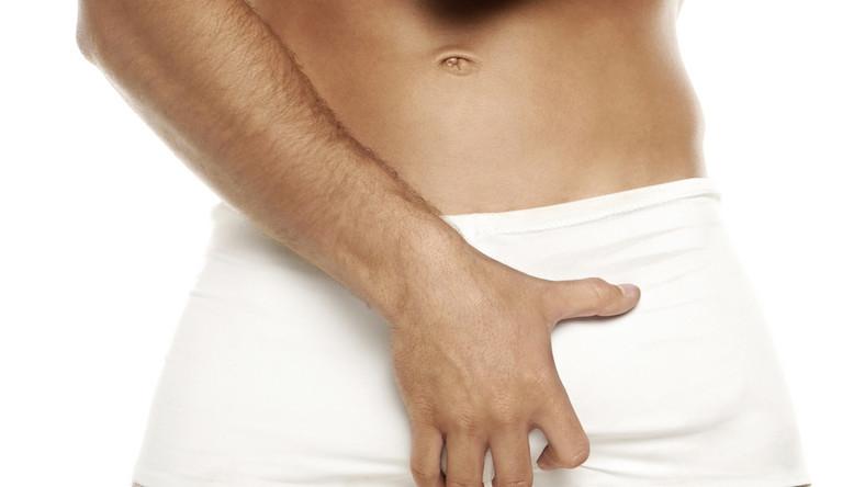 hímvessző férfiak erekciójában