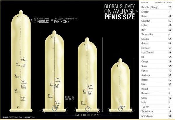 a pénisz méretének százaléka