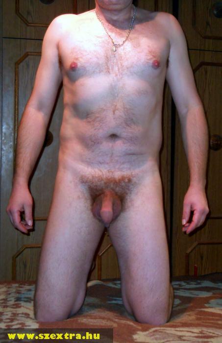 Férfi nemi szervek