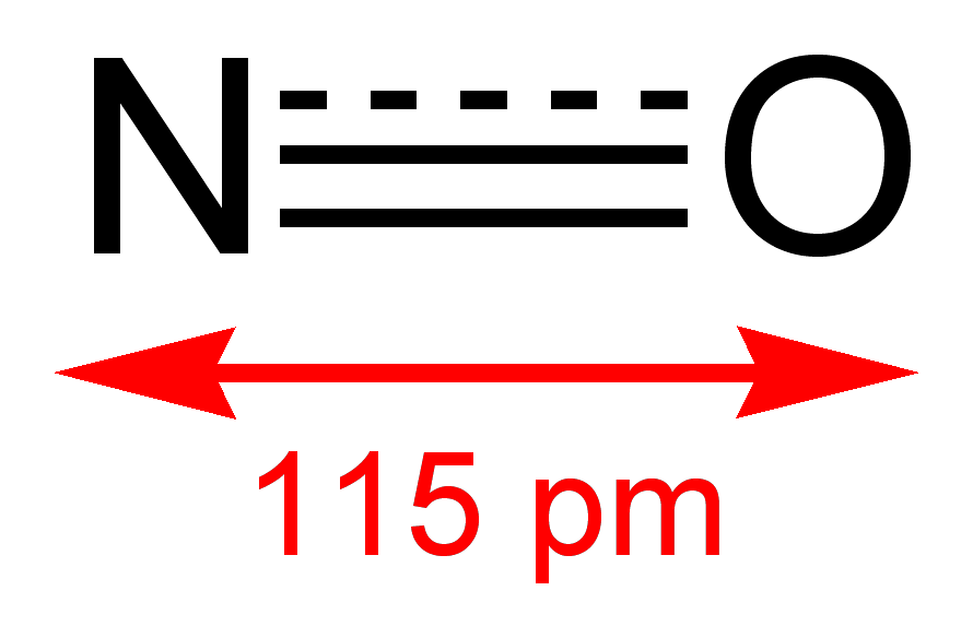 nitroglicerin és erekció