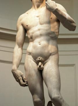 emberi pénisz mérete