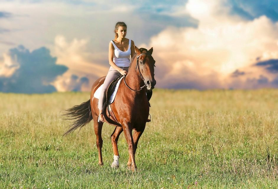erekció lovaglás közben