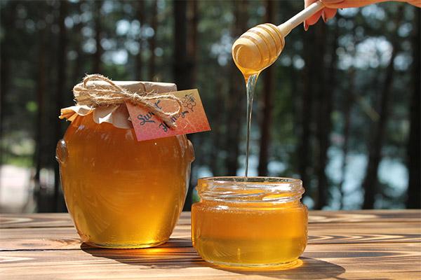 hosszú erekciós méz pénisz hossza mennyire fontos