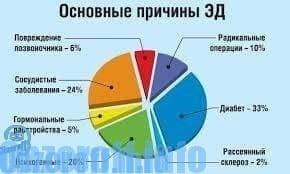 osztályok az erekció növelésére)